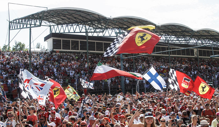 crowd and flags at the hungary gp
